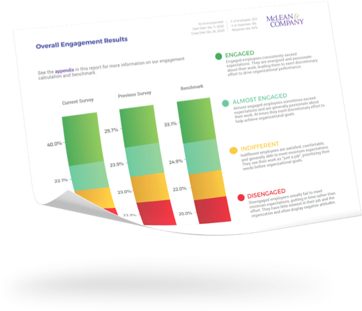 Diversity, Equity, and Inclusion Engagement Pulse Report Example